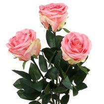 Róża piankowa i ozdobne róże