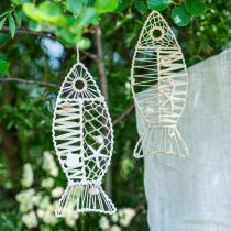 Morska ryba dekoracja z wikliny i muszli, wieszak dekoracyjny ryba forma natura 38cm