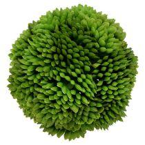 Kula Allium 5cm zielona 4szt