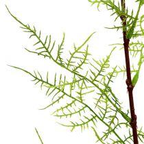 Gałązka szparagowa 75cm zielona 3szt.