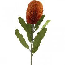 Sztuczny Kwiat Banksia Pomarańczowy Jesienna Dekoracja Pogrzebowa Kwiatowy 64cm
