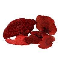 Gąbka do drzew czerwona 1kg