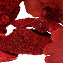 Gąbka drzewna czerwona 1 kg