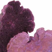 Gąbka do drzew fioletowa biała płukana 1kg