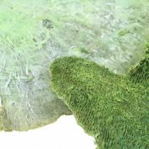 Gąbka do drzew zielona biała płukana 1kg