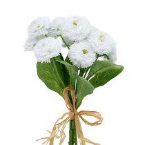 Bukiet Bellis biały 24cm 3szt