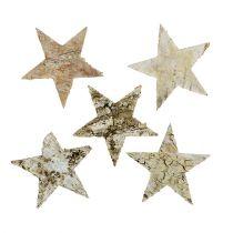 Gwiazdy brzozowe 6cm 100szt.