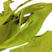 Liście dekoracyjne jabłko zielone 120cm 20szt
