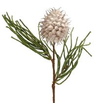 Gałązka kwitnąca Pianka Grey/Green 65cm