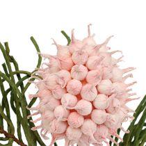 Gałązka kwitnąca Foam różowo-zielona 65cm
