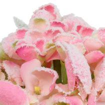 Hortensja różowa śnieżna 33cm 4szt