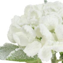 Hortensja biała śnieżna 33cm 4szt
