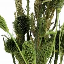 Bukiet Dzikich Kwiatów Natura, Zielony 25-60cm 70g