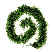 Wianek z bukszpanu zielony L170cm