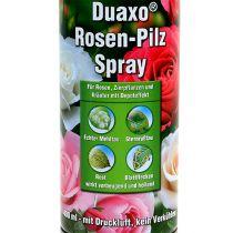 COMPO Duaxo ® Spray z grzybami różanymi 400ml