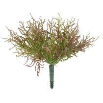 Calocephalus różowy/zielony 21,5cm