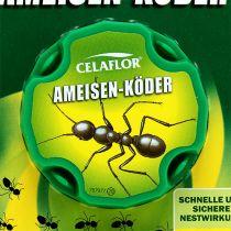 Przynęta na mrówkę Celaflor 2 sztuki