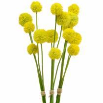 Podudzie Craspedia Żółty Sztuczny Kwiat Ogrodowy Jedwabne Kwiaty 15szt