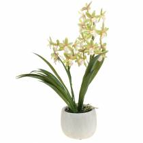 Orchidea Cymbidium Green w doniczce sztuczna H46cm