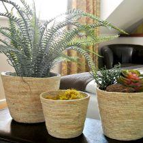 Planter Basket Rattan Natural/Brown Ø26/22/16cm 3szt.