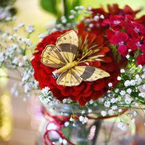 Motyl pióra z klipsem Złota Sprężyna Dekoracja 6cm 10szt Zestaw