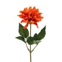 Dahlia Pomarańczowa 28cm 4szt.