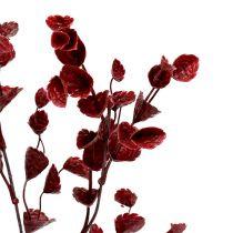 Gałąź dekoracyjna ciemnoczerwona 74cm 6szt