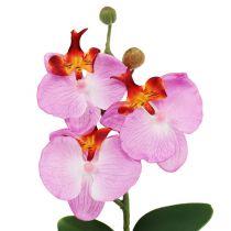 Deco Orchidea w doniczce różowa H29cm