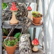 Drewniane muchomory dekoracyjne czerwone, natura 13,5cm - 19cm 3szt.