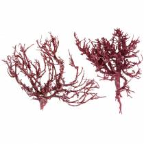Decoast Coral Branch Red White Washed 500g