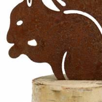 Wiewiórka stal nierdzewna na pniu H22cm