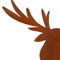 Elk stal nierdzewna do kijów H58cm