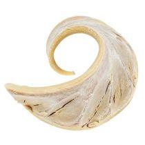 Ucho słonia bielone 25szt.