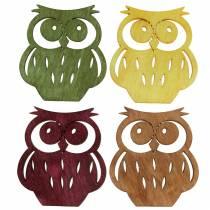 Sowy rozsypanki drewniane kolorowe różne 4cm 72szt.