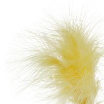 Pióra na patyku L 30cm Żółte 12szt.