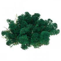 Mech dekoracyjny zielony Islandzki mech konserwowany do rękodzieła 400g