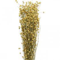 Len naturalny trawy do suchej florystyki 100g