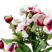 Flame Flower White 72cm
