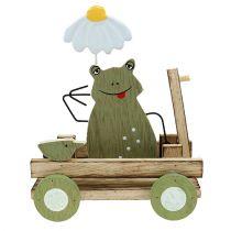 Żaba w wagonie Nature, zielona 19cm x 7cm x 14cm 4szt.