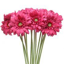 Gerbera różowa 48cm 12szt.