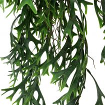Krzew paproci z poroża wiszący 84cm