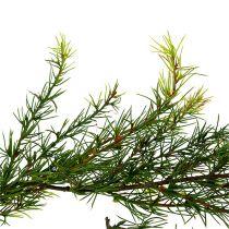 Girlanda modrzewiowa zielona L 200cm