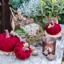 Szklany lampion, słoik na świeczkę z motywem liści, jesienna dekoracja Ø8cm H9cm 2szt.