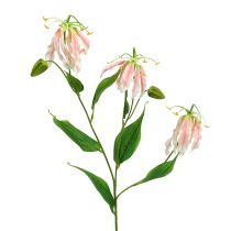 Gloriosa różowo-biała sztuczna 84cm 3szt.