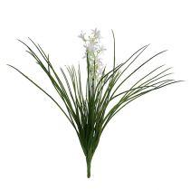 Krzew trawy z kwiatami zielony, biały 3szt.