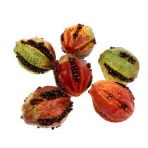 Owoce jesieni 3,5cm czerwone, brązowe 24szt