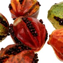 Owoce jesieni 3,5cm Czerwone, Brązowe 24szt.