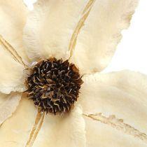 Kwiat drewniany jako korek bielony Ø9-12cm L45cm 15szt.
