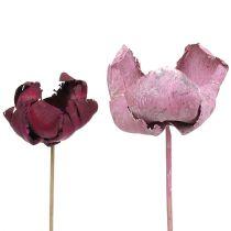 Drewniany kwiatek, kubek palmowy mix różowy Erica 25szt.