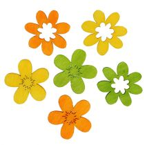 Dekoracja ściółki z kwiatów drewna 2cm różne kolory 144St
